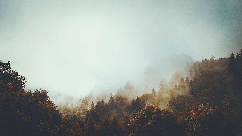 Raphaelle Monvoisin, Auric Fall, misty French Alps