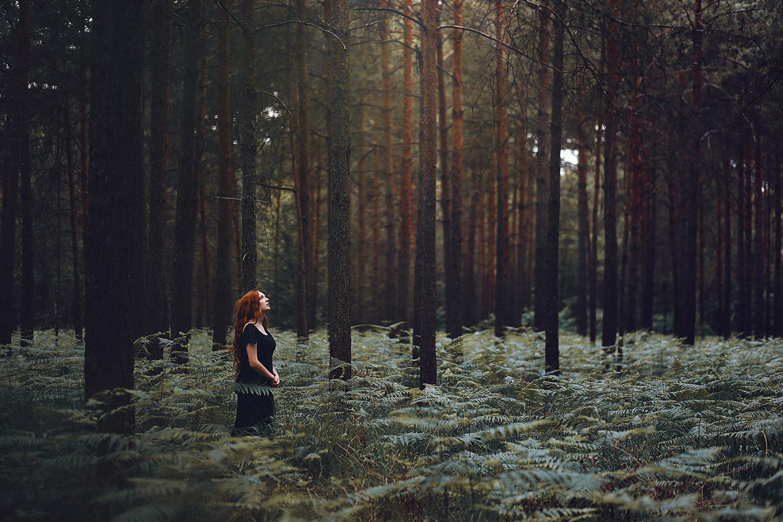 Raphaelle Monvoisin, Chorus of Trees, Fontainebleau