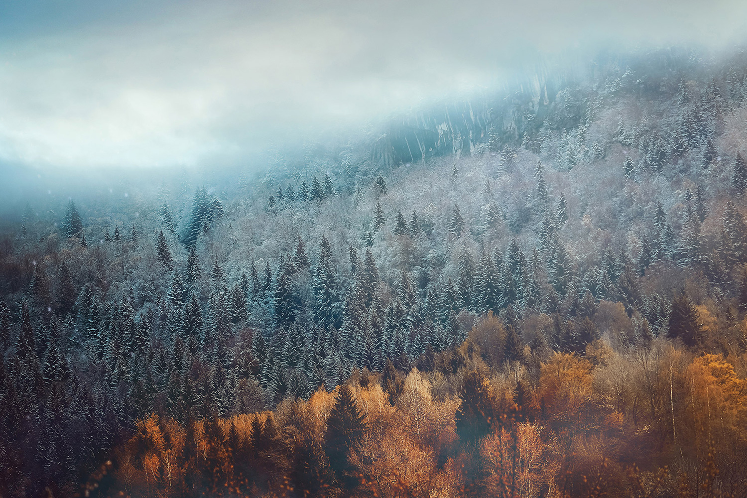 Raphaelle- Monvoisin, Edge of Seasons, French Alps in Winter