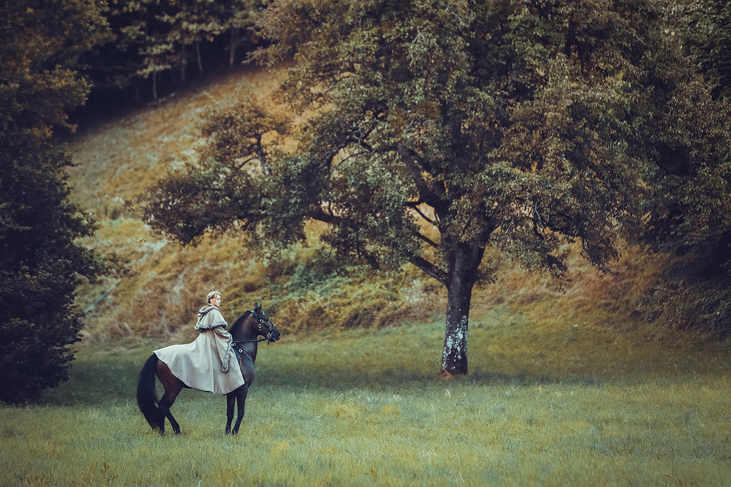 Raphaelle-Monvoisin The Lost Vale fantasy shot woman and her horse