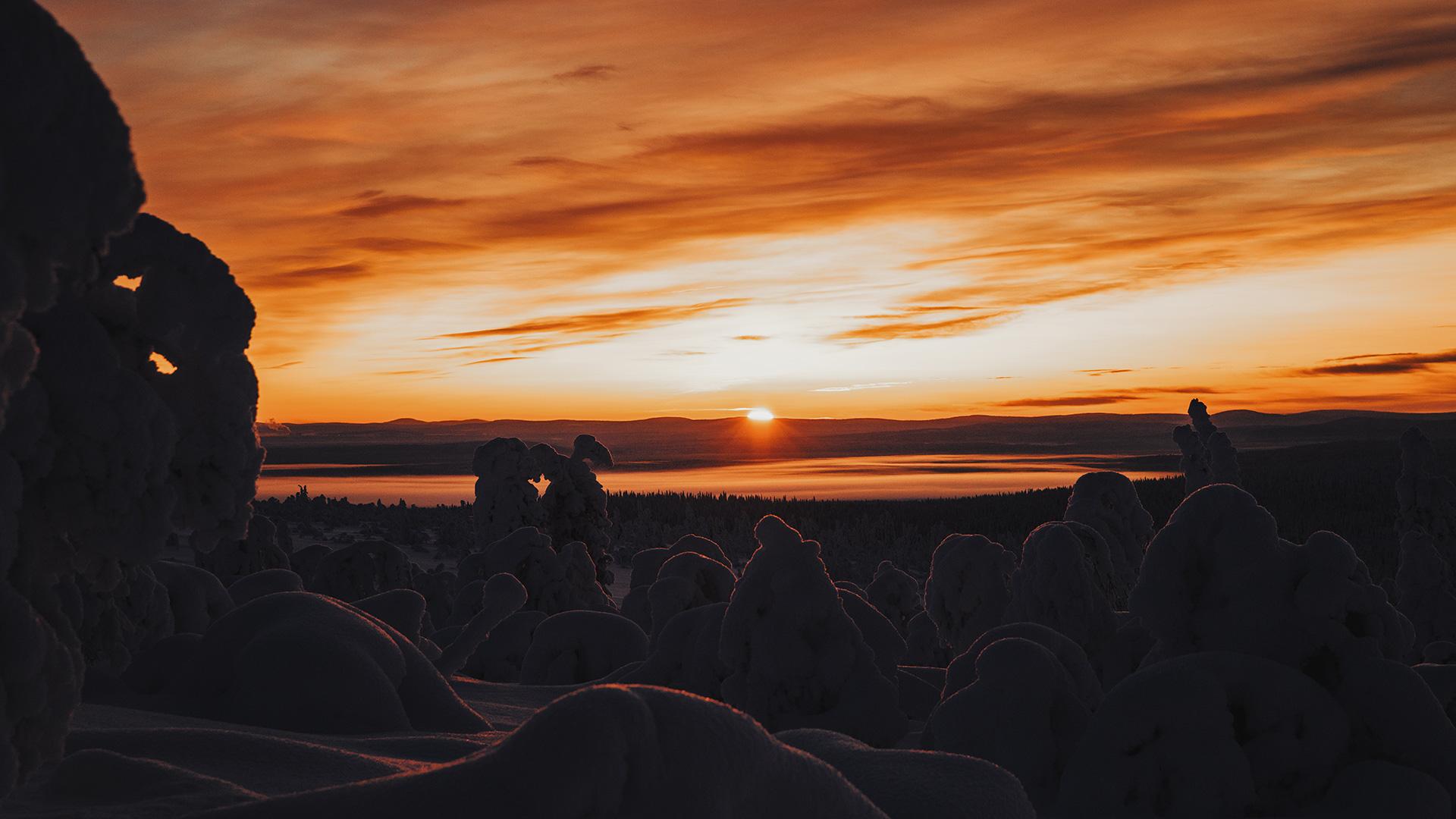 Lapland sunset forest Raphaelle Monvoisin