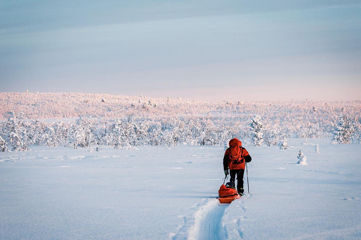 Lapland taiga pulka Raphaelle Monvoisin