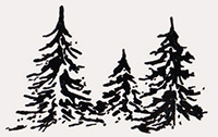 pine-trees-deco-02