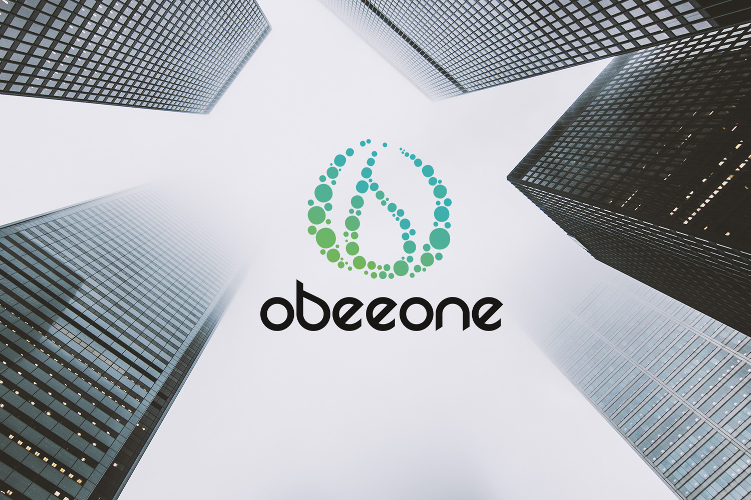 Logotype brand branding ObeeOne SSII business consulting developer