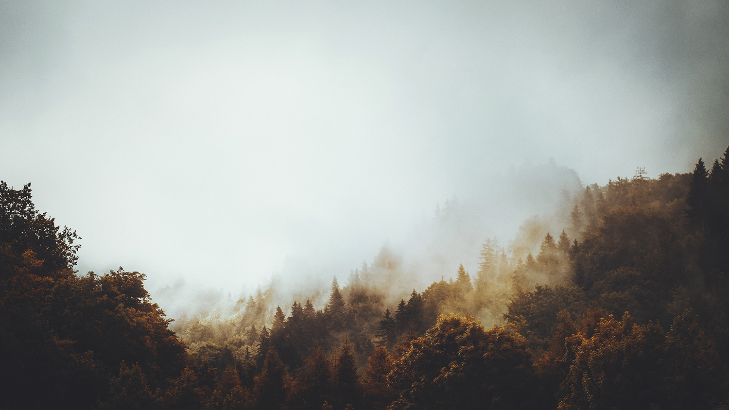 Raphaelle Monvoisin landscape wildscape photography moody ethereal nature wilderness