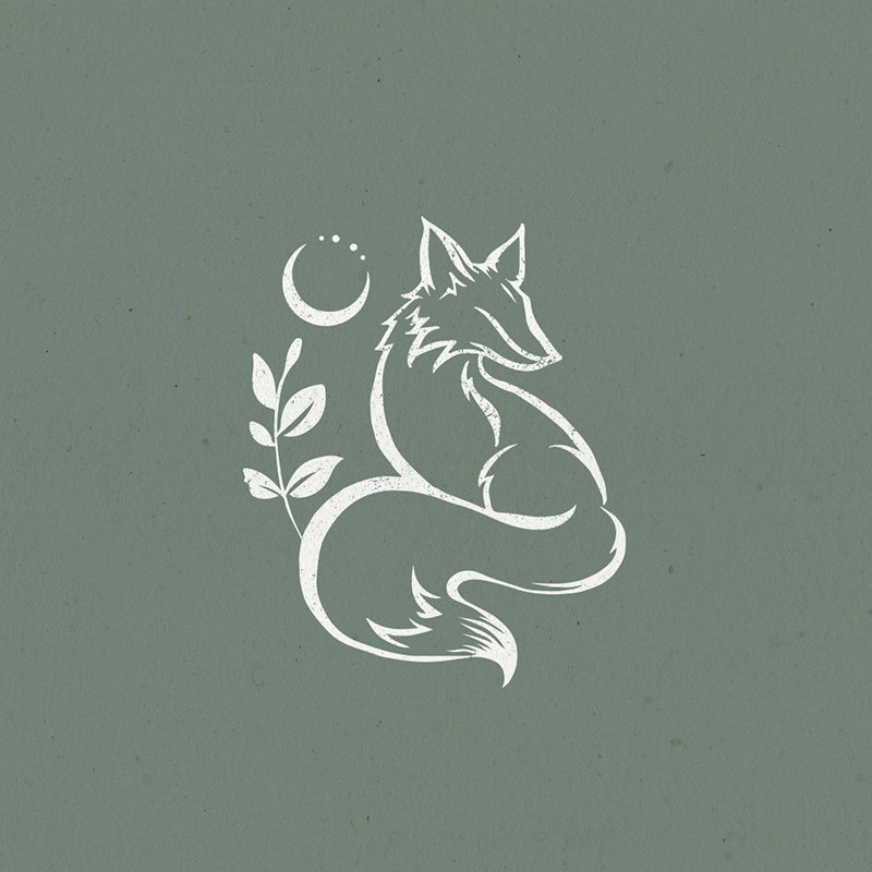 Raphaelle Monvoisin Illustration fox animal moon
