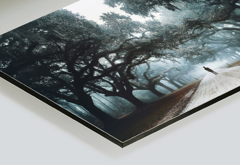 Raphaelle-Monvoisin_Print-art-dibond