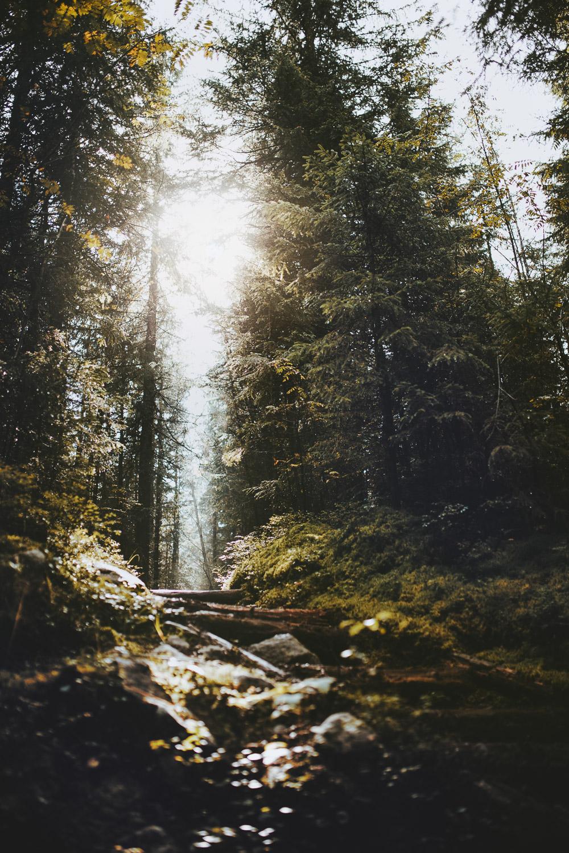 Raphaelle Monvoisin Poland Zakopane Tatras mountains nature travel adventure