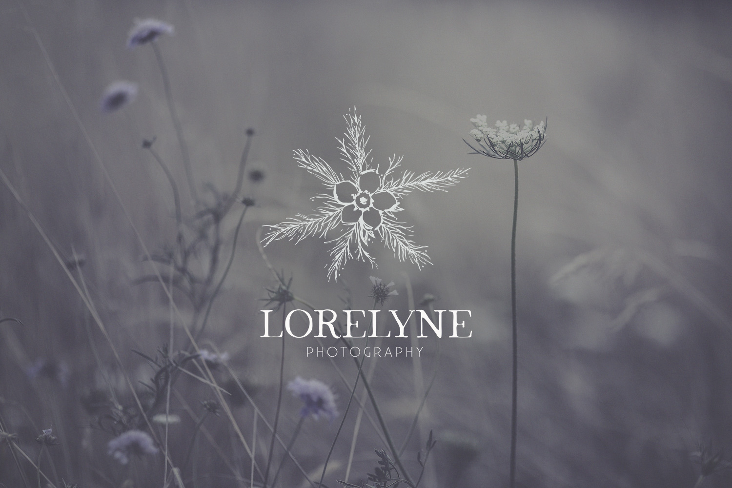 Lorelyne Photography Photographe Photographer branding logo logotype visual identity botanical flower nature plant